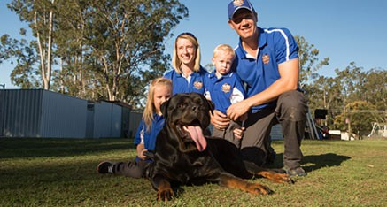Brisbane Dog Trainer & Obedience Training Classes, All Dogs